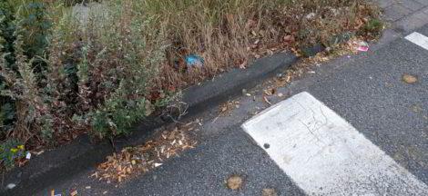 """Müll""""kippen"""" an der Einmündung der Bahnhofstraße in die Mindener Straße"""